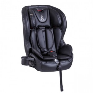 Phil & Teds Columbus Child Booster Seat