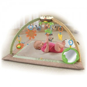FISHER-PRICE Snuggabunny Ultra-Comfort Musical Gym